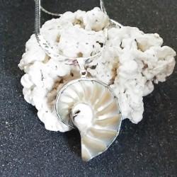 Pendentif nacre nautile beige naturel