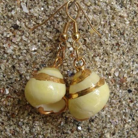 Boucles d oreilles coquillage Terrestre blanc et jaune bordure or