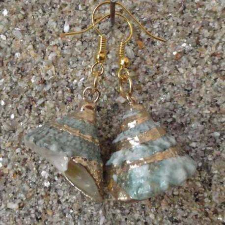 Boucles d oreilles coquillage cône vert et gris