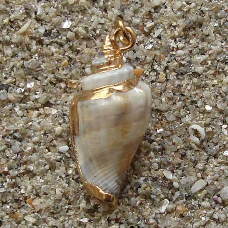 Pendentif coquillage strombus XL| collier plaqué or