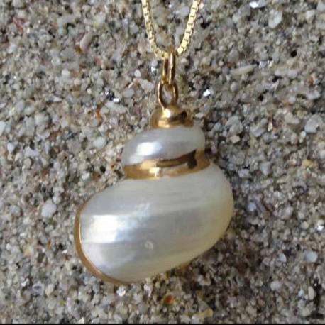 Pendentif coquillage burgo blanc nacré | collier plaqué or