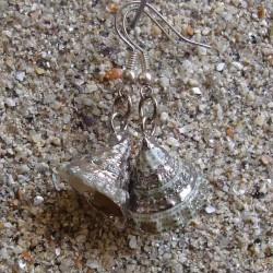 Boucles d oreilles vrai coquillage cône gris