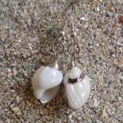 Boucles d oreilles vrai coquillage blanc strié