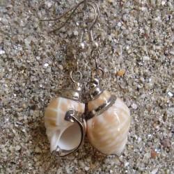 Boucles d oreilles coquillage Babylonia aerolata blanc marron