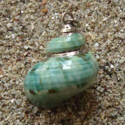Pendentif coquillage burgo vert | collier argent sterling massif 925/1000