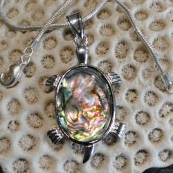 Pendentif tortue nacre abalone reflets roses et verts
